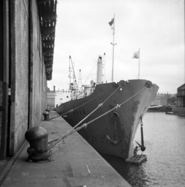 image 04 - 'neva' at liverpool