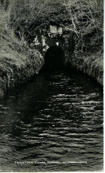 image 20022_0517